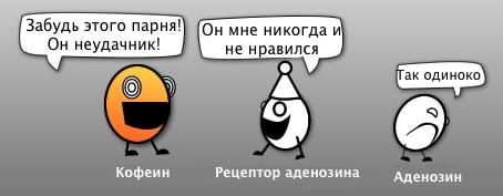 комикс об кофеине, рецепторе аденоида и аденозине