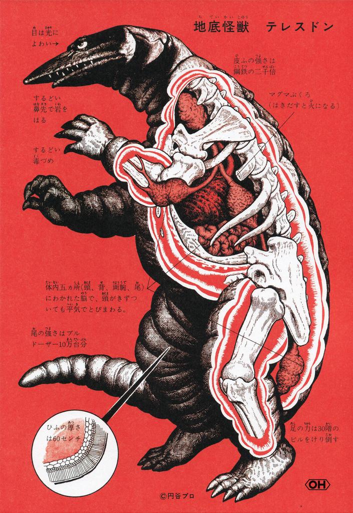 Анатомия монстров: Дресдон