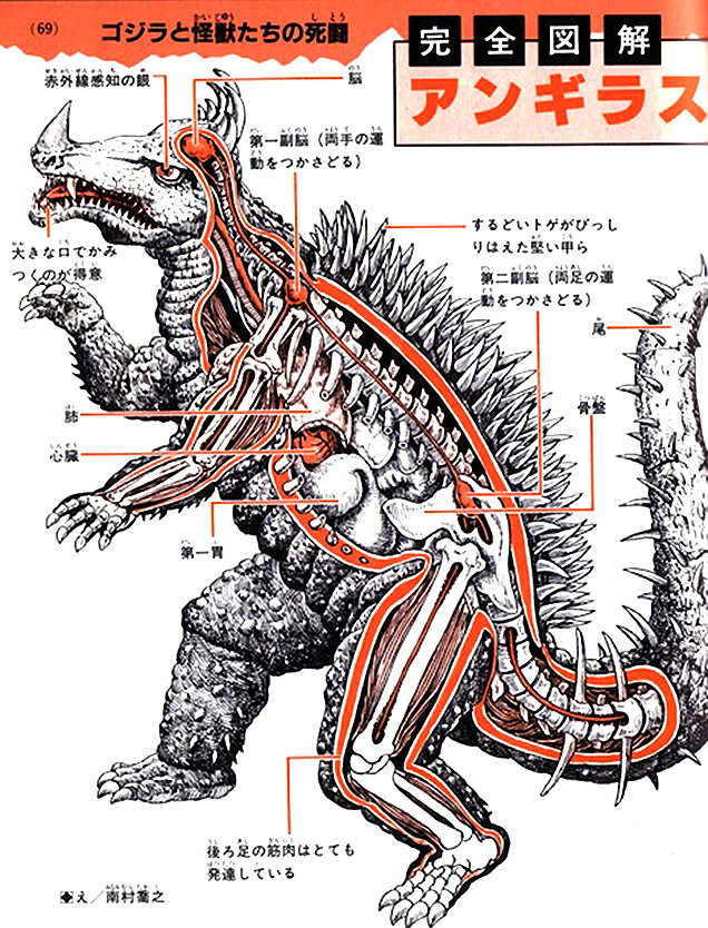 Анатомия монстров: Агуриус